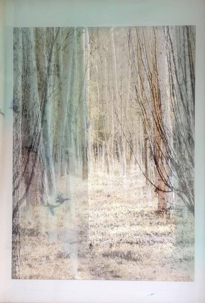 D Galerie - Stephanie Malossane - For E